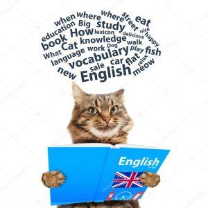 kak uchit slova na anglijskom